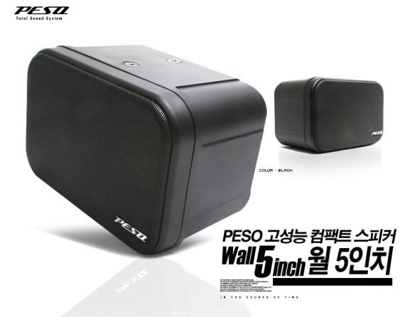 뮤직용 PA Speaker PESO WP-102