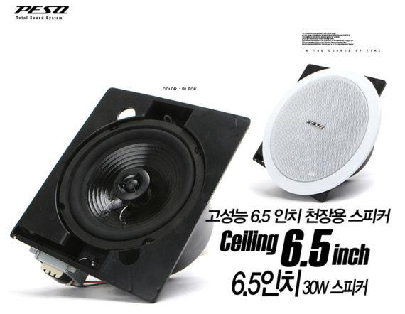[PESO] 뮤직 Ceiling(천정) 스피커